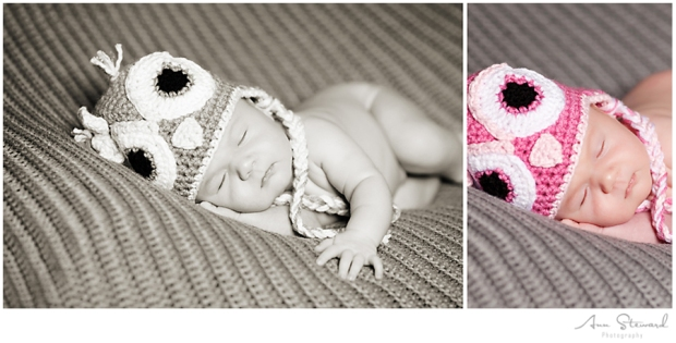 Davenport Newborn Photographer