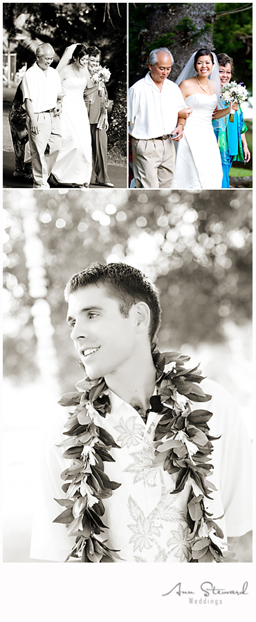 Quad City Wedding Photography Hawaii Destination