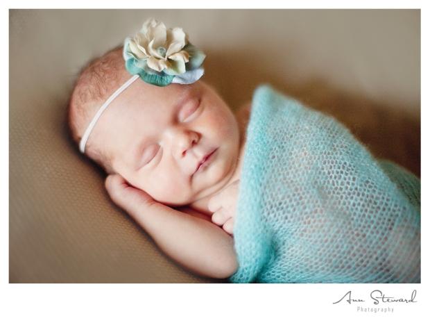 Quad City Newborn Photographer