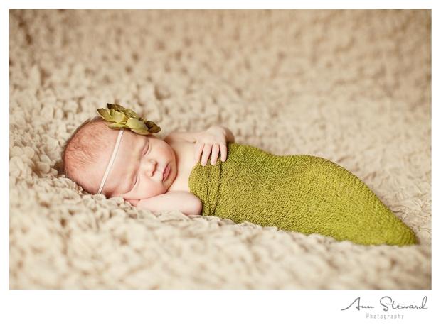Quad Cities Newborn Photographer