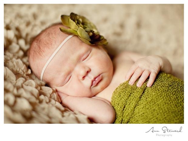 Quad Cities Newborn Photography