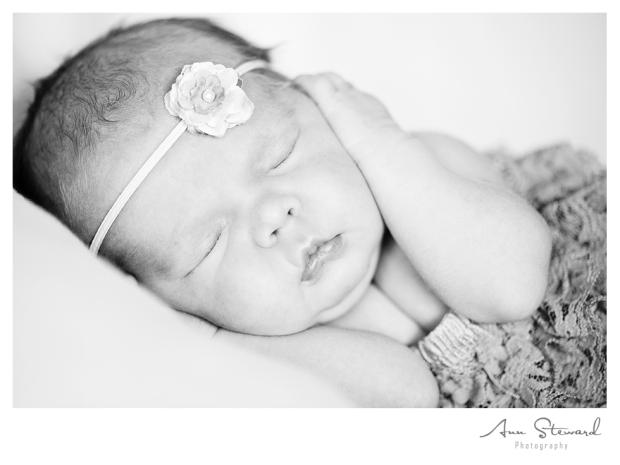 Quad City Newborn Photography