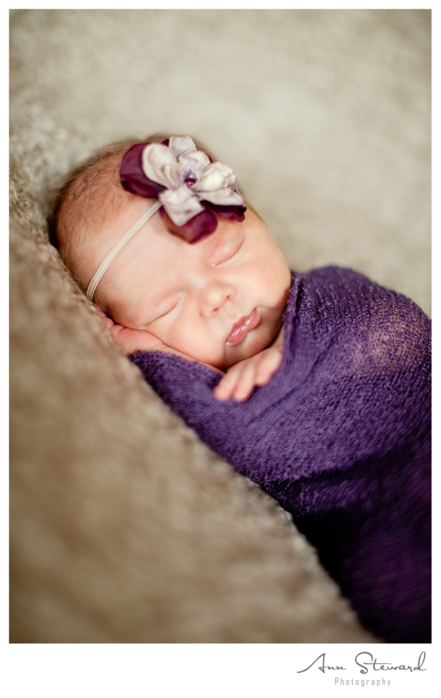 Davenport Newborn Photography