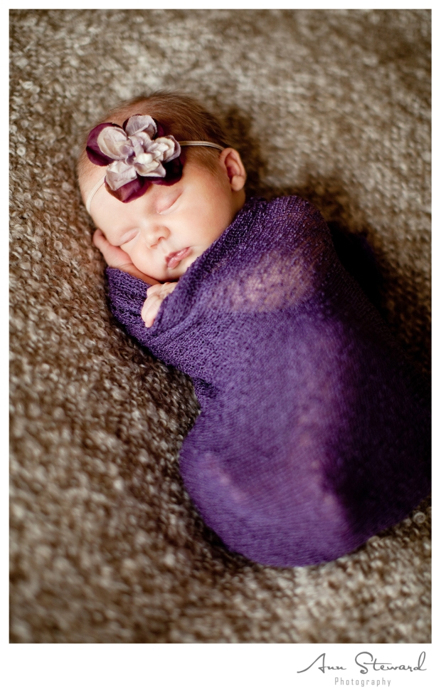 Bettendorf Newborn Photographer