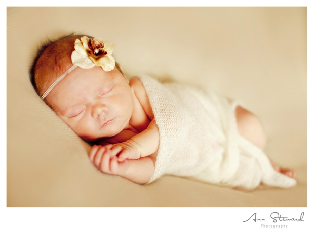 Iowa Newborn Photographer